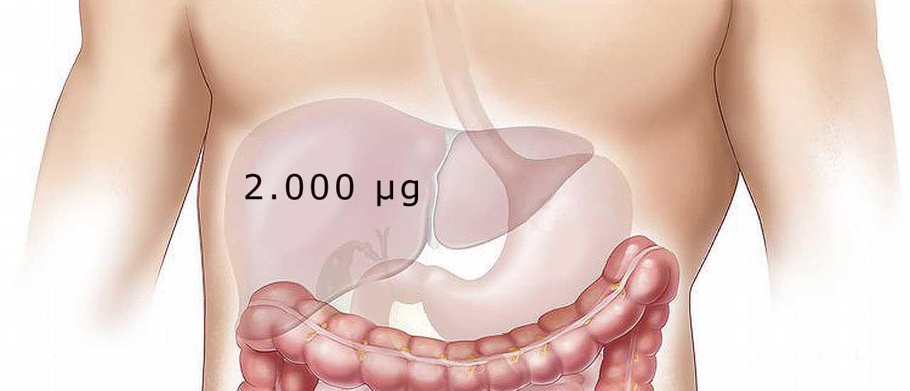 Dit lager af B12-vitamin i leveren er måske nok til flere år.
